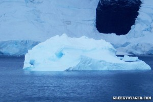antarctica_penguins_203