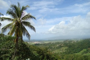 martinique_045