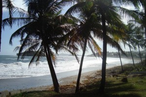 martinique_072