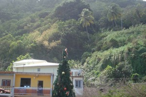 martinique_077