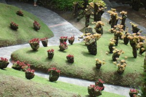 martinique_garden_235