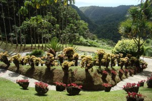 martinique_garden_241